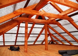 Střechy #03, Sedlec u Temelína/2012